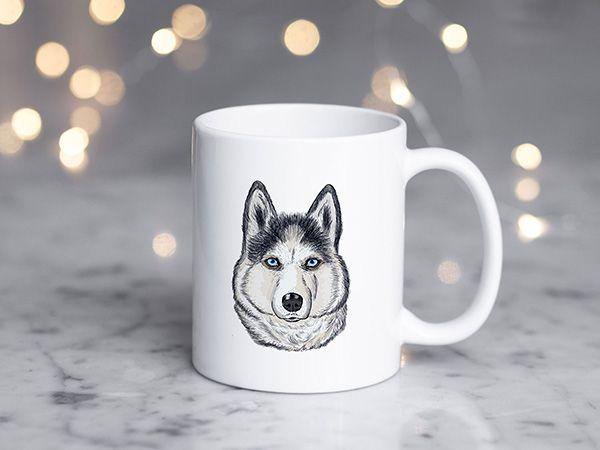 Cani pentru iubitorii de animale
